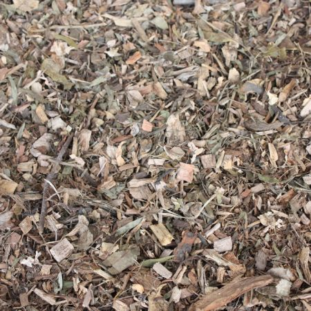 Leaf-Litter-plain-700x700
