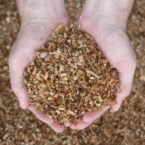 Pine-Sawdust-700x700