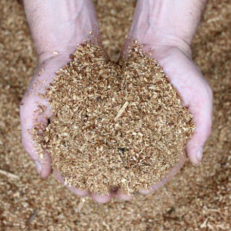 Cypress-Pine-Sawdust-700x700